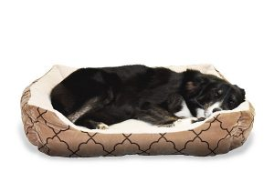 Kam umiestniť pelech pre psa?