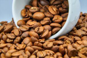 Podnikatelský záměr kavárna ušitý na míru